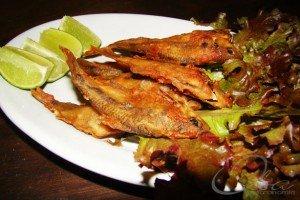 Melhores Receitas de Peixes e Frutos do Mar do Oba