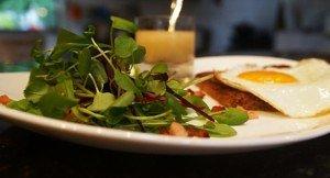 Salada de Folhas Novas, Bacon e Ovo