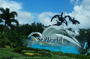 Sea World e o fantástico Sharks Underwater Grill