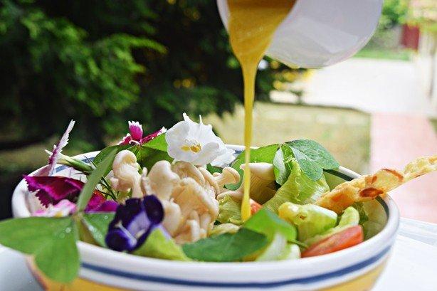 Salada de Trevinho 2