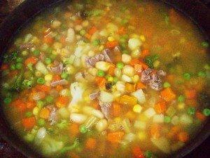 Sopa Campeira