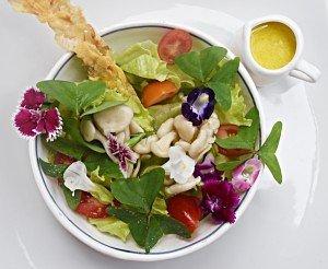 Salada Florida de Trevinho com Molho de Mel de Mandaçaia