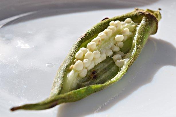"O delicioso ""Caviar de Quiabo"""