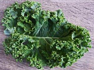 Você conhece Couve Kale Frisada?