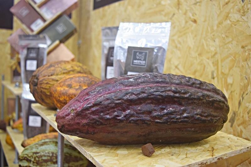 Chocolat Bahia 2017 – Ilhéus