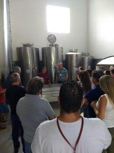 Tour do Vinho Vinícola Castanho.