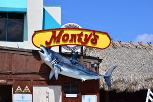 Monty's  Raw Bar – Miami Beach Marina