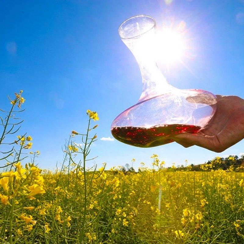 Vinhos de Primavera: os sabores da estação das flores